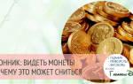 Железные монеты во сне. Юбилейная монета