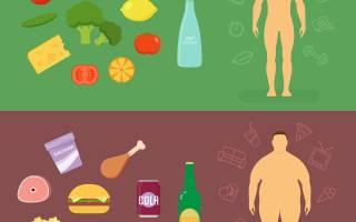 Еды 3 раза в. Правильное питание: что, когда и сколько