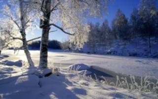 Мороз и солнце день чудесный поэт. «Зимнее утро» А