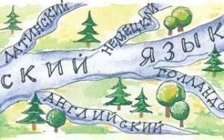 Заимствованная лексика в русском языке. Интернациональная лексика: особенно