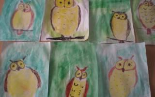 Рисуем сову поэтапно карандашом. Как нарисовать птицу сову