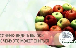 К чему яблоки во сне видеть? К чему снятся яблоки? Есть яблоко во сне.