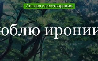 «Я не люблю иронии твоей…»: анализ стихотворения Н.А. Некрасова