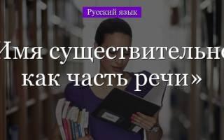 Как найти существительное. Имя существительное в русском языке
