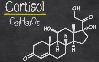 Уравновешиваем гормоны: снижаем уровень кортизола.