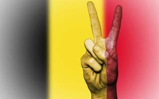 Какой язык в бельгии является официальным. Национальный язык бельгии