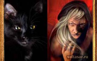 Защита дома от ведьм и колдунов. Как защититься от ведьмы