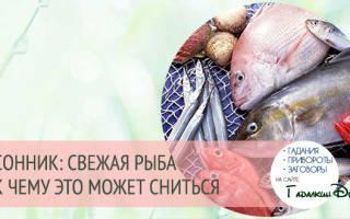 К чему видеть рыбу во сне? Рыба женщине.