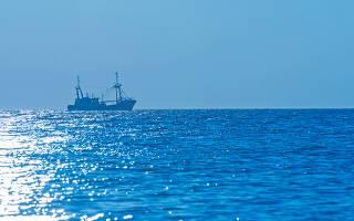 Большая часть тихого океана находится в. Рыболовство и морские промыслы