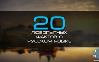Интересные факты о заимствованных словах. Удивительное в русском языке