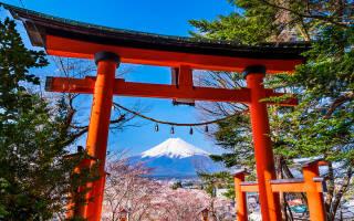 Взять в японию. Важные советы для тех, кто едет в японию