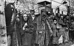 Освобождение освенцима советской армией. Концлагерь Аушвиц