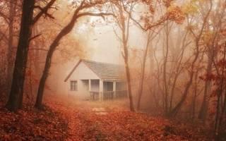 Старый дом сонник миллера. Действия во сне