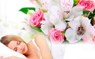 Видеть во сне красивые цветы в горшках. К чему снятся цветы в горшках