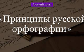 Признаки русской орфографии. Основы русской орфографии