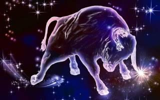 Любовный гороскоп на 31 марта. Гороскоп — Телец