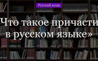Причастие в русском. Что такое причастие в русском языке