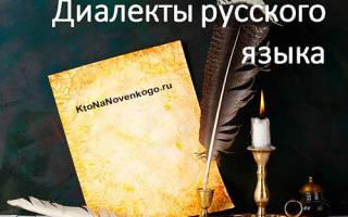 Диалекты русского языка фразы примеры. Диалектизмы