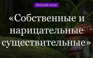 Что такое нарицательное в русском языке. Нарицательные существительные