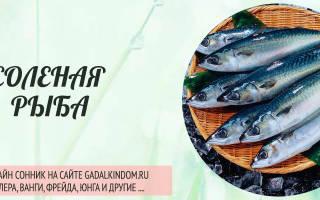 Солить рыбу. К чему по соннику снится солёная рыба