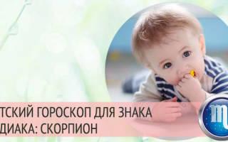 Детский гороскоп — ребенок скорпион. Мальчик скорпион