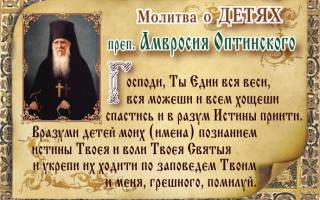 Какой иконе молиться за детей и внуков. Православная молитва за внуков