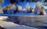 Толкование снов зима, сон зима, приснилось зима. Зима: к чему снится сон