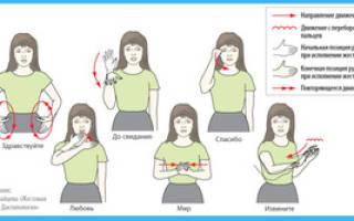 Перевод на язык жестов. Как я начала учить язык жестов