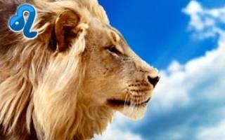 Гороскоп на год для львов женщины.