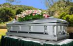 К чему снится гроб. Сонник гроб, к чему снится гроб во сне