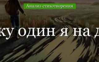 М.Ю. Лермонтов «Выхожу один я на дорогу»: анализ стихотворения