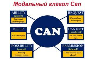 Вопросы с could в английском языке. Can (глагол): правила употребления