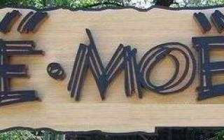 Происхождение буквы е для детей. Как буква «Ё» попала в русский алфавит