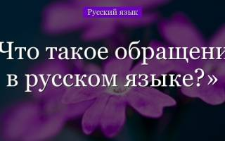 Что называется обращением русский язык. Обращение