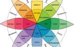 Какие бывают чувства и от чего они зависят? Пять основных чувств человека.