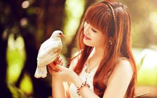 К чему во сне птицы клюют вас. К чему снится поймать птицу руками