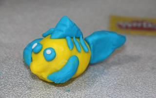 Как сделать летучую рыбу из пластилина. Лепка из пластилина «рыбка»