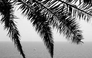Три ошибки каждого начинающего фотографа и их решение. Ошибка #5