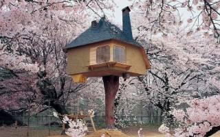 Самые необычные дома в мире (17 фото). Фото домов необычной формы