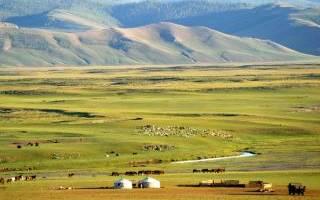 Фауна Монголии. Заповедники Монголии