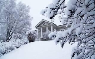 Мороз солнце день чудесный кто автор. Зимнее утро