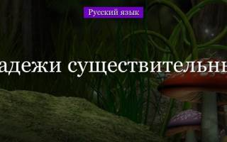Как сделать падежи. Сколько в русском языке падежей? Определение падежа
