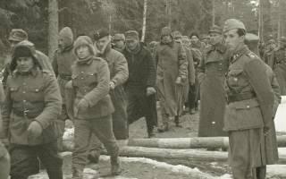 Потери в финской войне 1939 в цифрах. Зимняя война глазами финнов