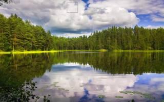 Сон чистый водоем. Что означает сон Водоем