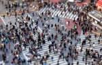 Понятие интереса. роль общественных и личных интересов в развитии общества