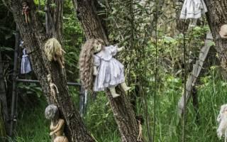 Остров Кукол – страшная мексиканская достопримечательность. Остров кукол.