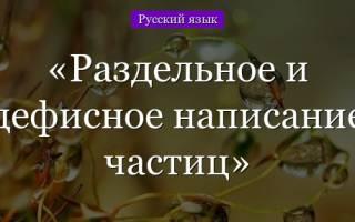 Перечень частиц в русском языке. Правописание частиц