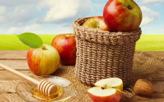 Три Спаса августа: мед, яблоки, хлеб. Ореховый спас: все о празднике