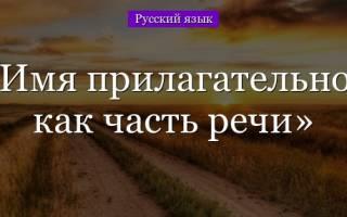 Имя прилагательное. Что такое имя прилагательное в русском языке