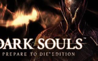 Дарк соулс 1 прокачка персонажа. Советы по игре Dark Souls